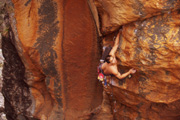 "Tim Le on ""Strike the First Blow"" (25)."
